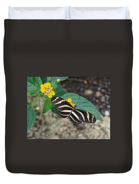 Duvet Cover featuring the photograph Zebra Longwing Butterfly - 1 by Paul Gulliver