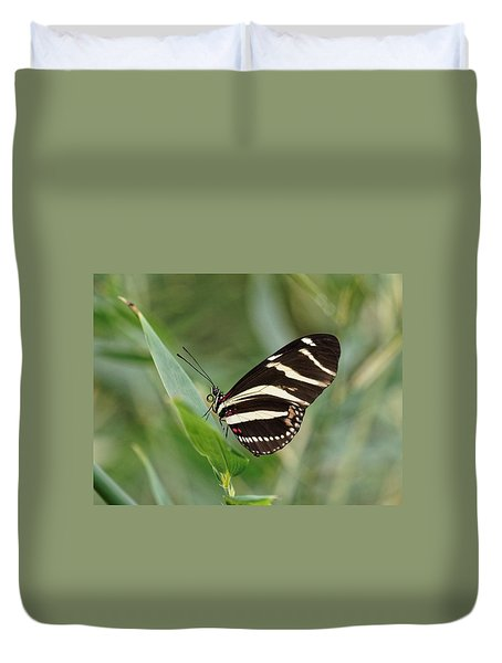 Duvet Cover featuring the photograph Zebra Longwing Butterfly - 2 by Paul Gulliver