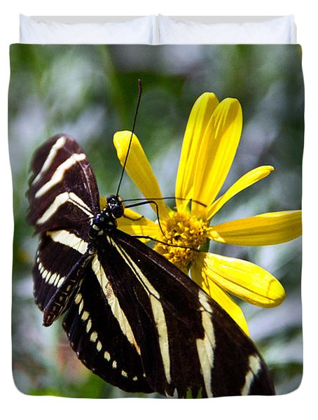 Zebra Longwing Feeding Duvet Cover