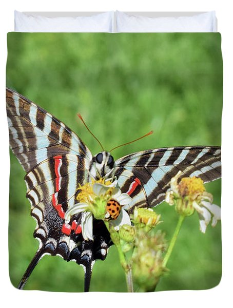 Zebra Swallowtail And Ladybug Duvet Cover