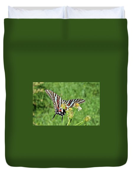 Zebra Swallowtail And Ladybug Duvet Cover