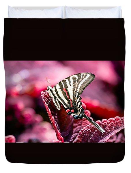 Zebra Swallowtail On Red Head Coleus Duvet Cover