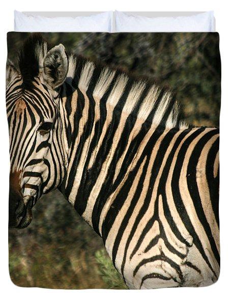 Zebra Watching Duvet Cover