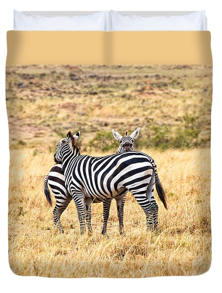 Zebras Resting In The Masai Mara Duvet Cover by Perla Copernik