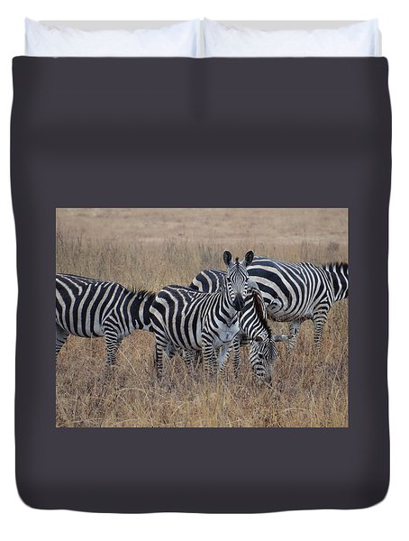 Zebras Walking In The Grass 2 Duvet Cover