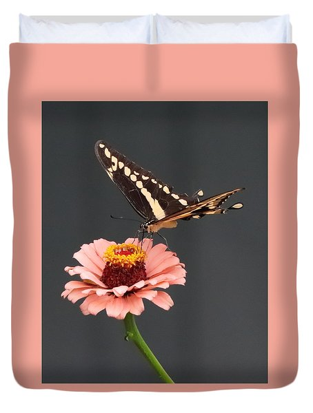 Zinnia With Butterfly 2702 Duvet Cover