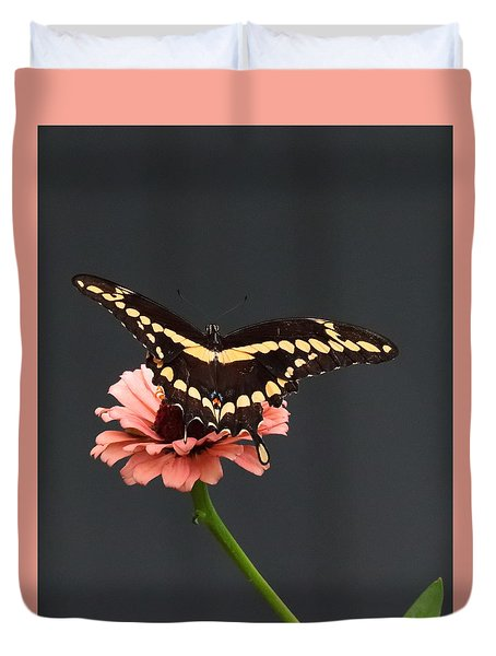 Zinnia With Butterfly 2708  Duvet Cover