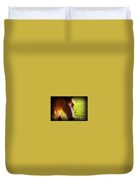 Zuni Duvet Cover