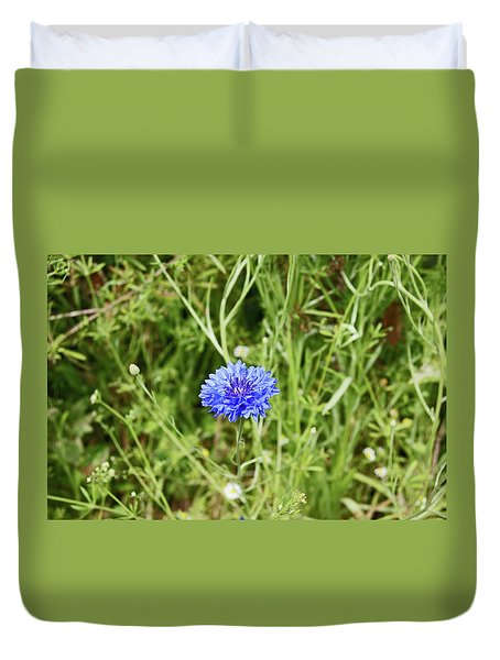 06/07/19  Heswall. The Wirral Way. Blue Cornflower. Duvet Cover