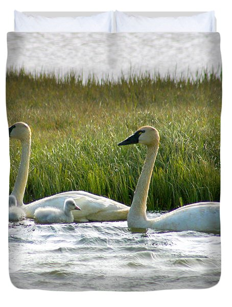 Arctic Tundra Swans And Cygnets Duvet Cover