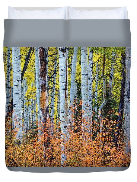 Autumn In Color Duvet Cover