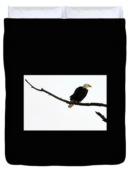 Bald Eagle 120501 Duvet Cover