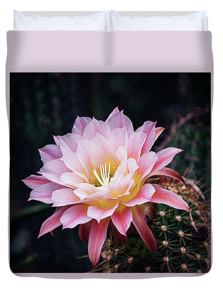 Cactus Bloom In Pink Duvet Cover