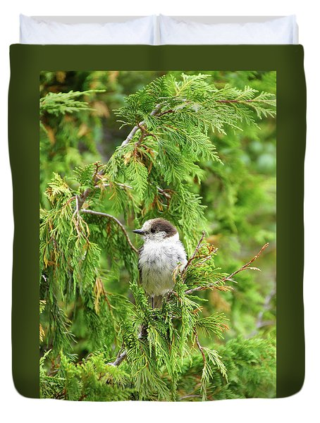 Camprobber - The Gray Jay Duvet Cover