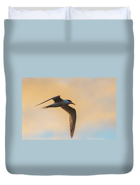 Crested Tern In The Early Morning Light Duvet Cover