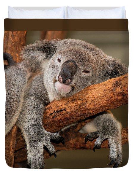 Cute Australian Koala Resting During The Day. Duvet Cover