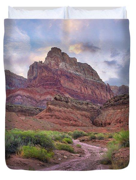 Desert And Cliffs, Vermilion Cliffs  Duvet Cover