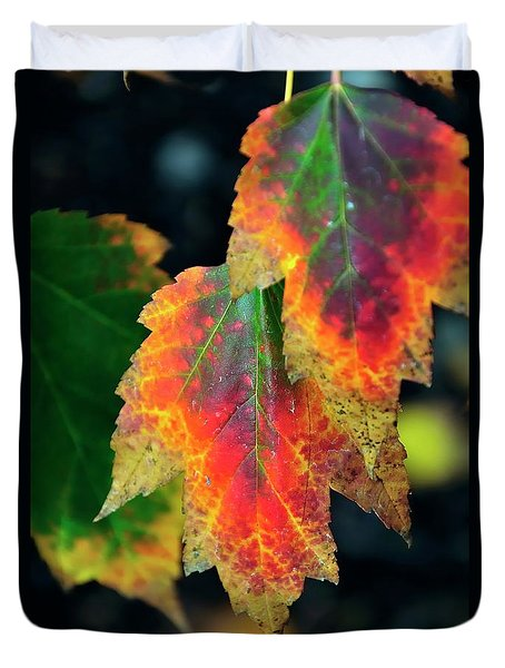 Duvet Cover featuring the photograph Fall Leaves 6072 by Jerry Sodorff