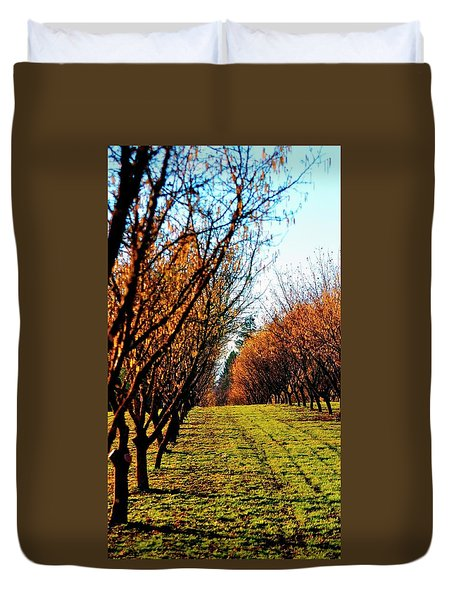 Duvet Cover featuring the photograph Hazelnut Orchard 21578 by Jerry Sodorff