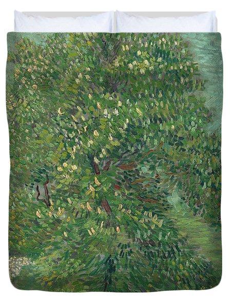 Horse Chestnut Tree In Blossom Duvet Cover