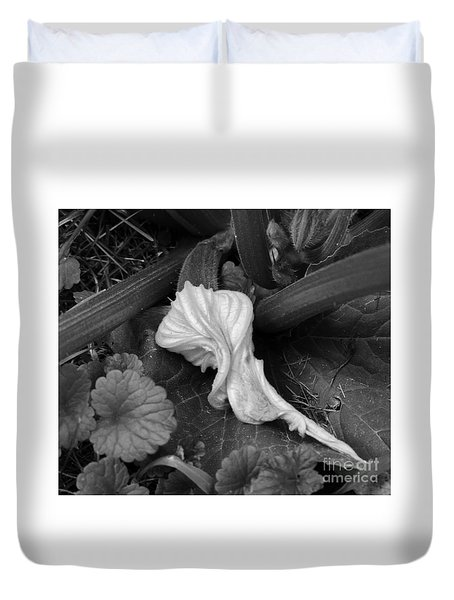 Duvet Cover featuring the photograph New Life by Rosanne Licciardi