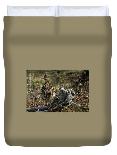 Ruffed Grouse 50701 Duvet Cover