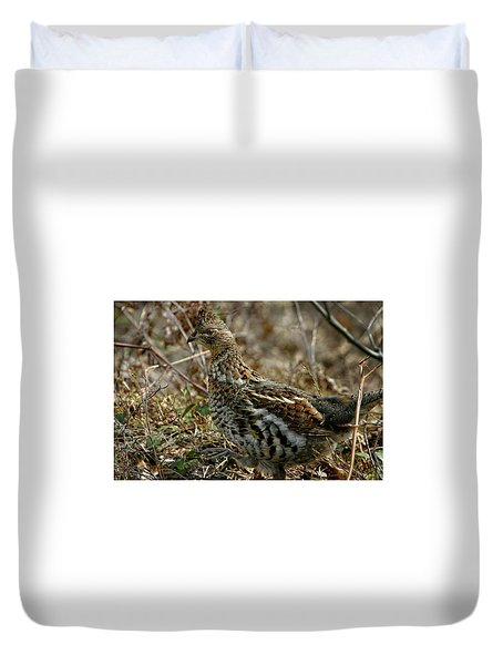 Ruffed Grouse 50702 Duvet Cover