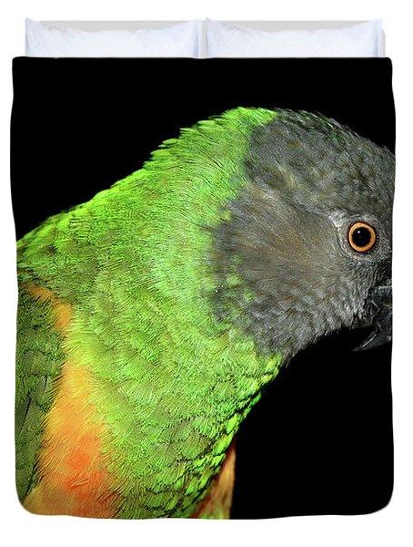 Senegal Parrot Duvet Cover