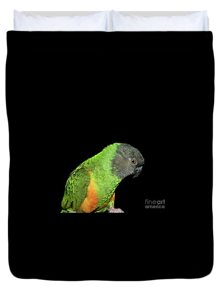 Senegal Parrot Duvet Cover