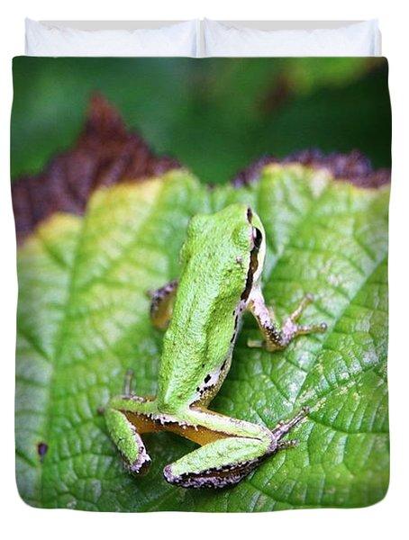 Tree Frog On Leaf Duvet Cover