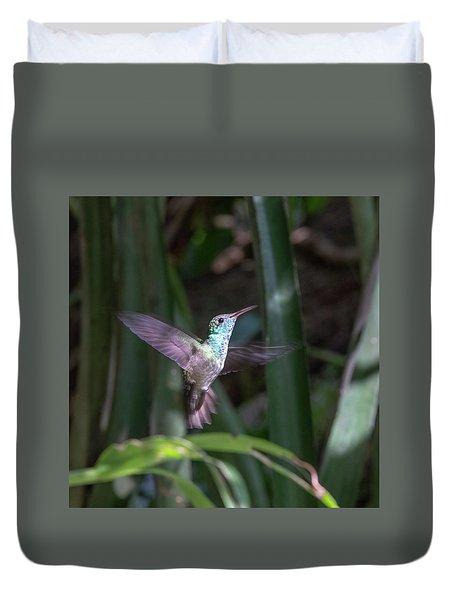 Versicolored Emerald Hummingbird Hovers Duvet Cover