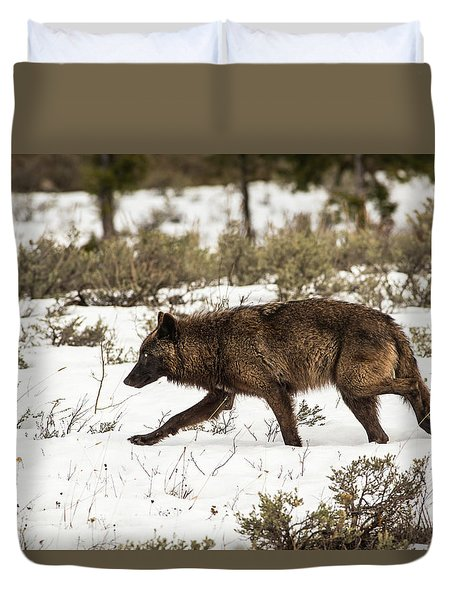 Duvet Cover featuring the photograph W10 by Joshua Able's Wildlife