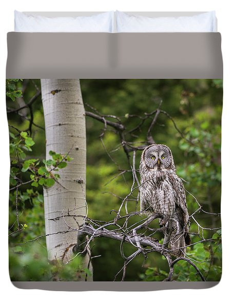 Duvet Cover featuring the photograph B14 by Joshua Able's Wildlife