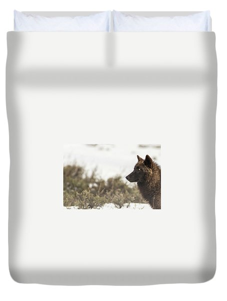 Duvet Cover featuring the photograph W15 by Joshua Able's Wildlife