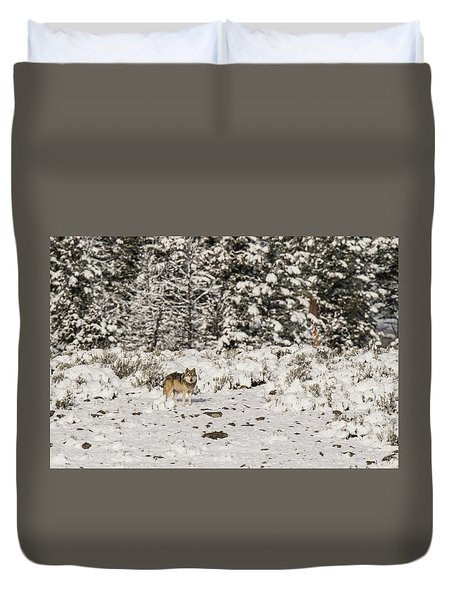 Duvet Cover featuring the photograph W20 by Joshua Able's Wildlife