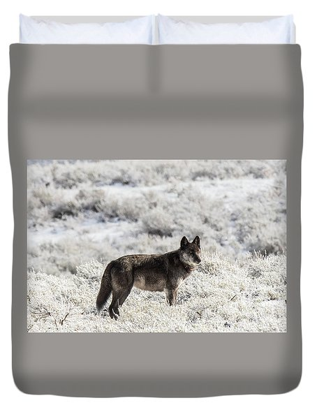 Duvet Cover featuring the photograph W23 by Joshua Able's Wildlife
