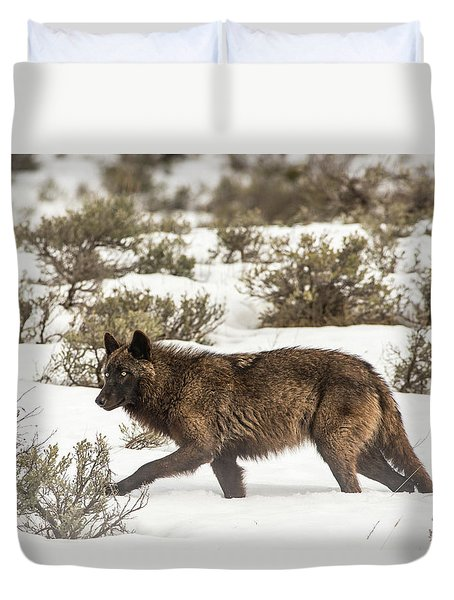 Duvet Cover featuring the photograph W4 by Joshua Able's Wildlife