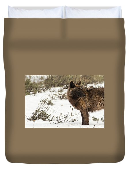 Duvet Cover featuring the photograph W6 by Joshua Able's Wildlife