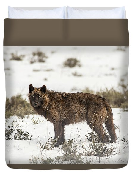 Duvet Cover featuring the photograph W8 by Joshua Able's Wildlife
