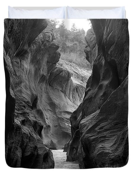 Willis Creek Slot Canyon Utah Winter Duvet Cover