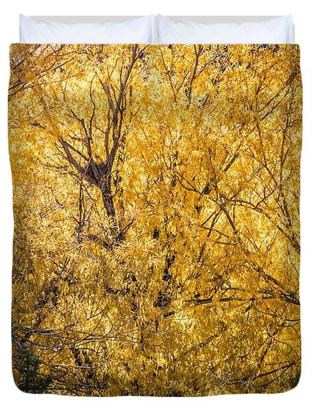 Duvet Cover featuring the photograph Autumnal Park. Autumn Trees And Leaves. Fall by Alex Grichenko