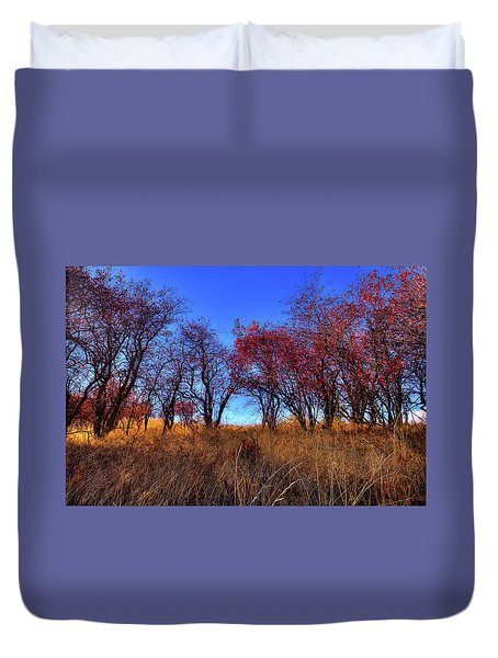 Duvet Cover featuring the photograph Autumn Light by David Patterson