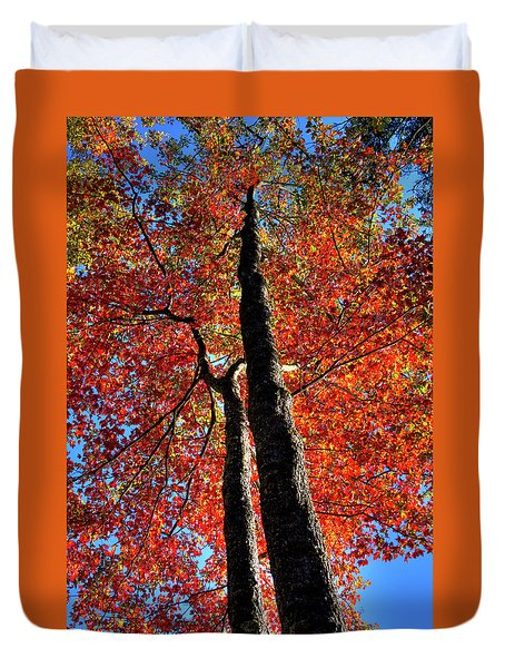 Duvet Cover featuring the photograph Autumn Reds by David Patterson
