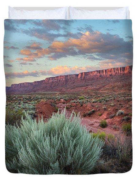 Desert And Cliffs, Vermilion Cliffs Nm Duvet Cover