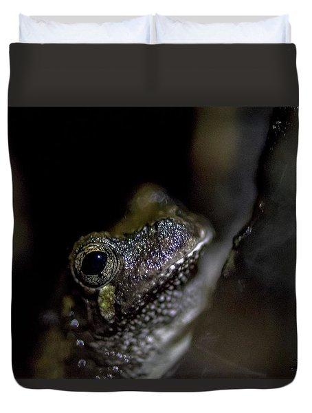 Grey Tree Frog Duvet Cover