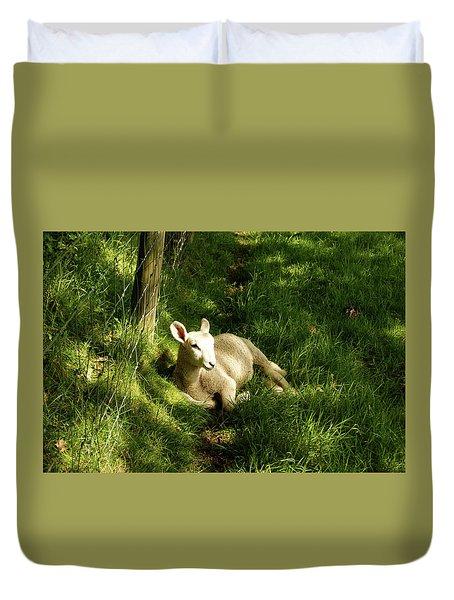 20/06/14  Keswick. Lamb In The Woods. Duvet Cover