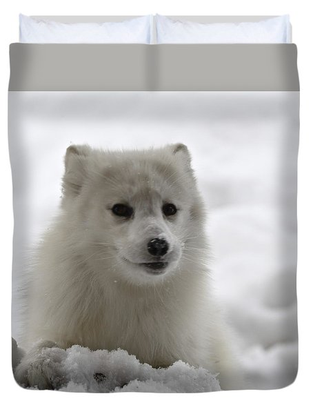 Artic Fox Duvet Cover