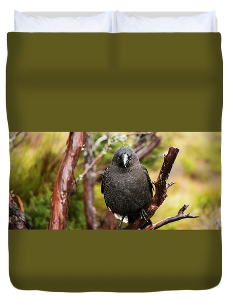 Duvet Cover featuring the photograph Black Currawong Resting On A Tree Branch by Rob D