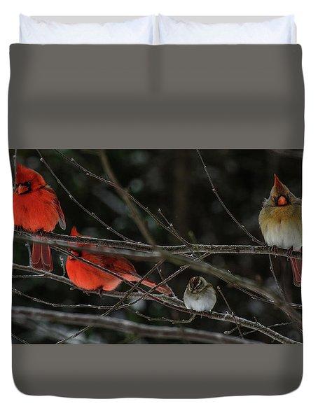 3cardinals And A Sparrow Duvet Cover