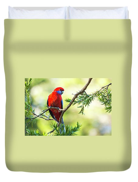 Duvet Cover featuring the photograph Crimson Rosella by Rob D